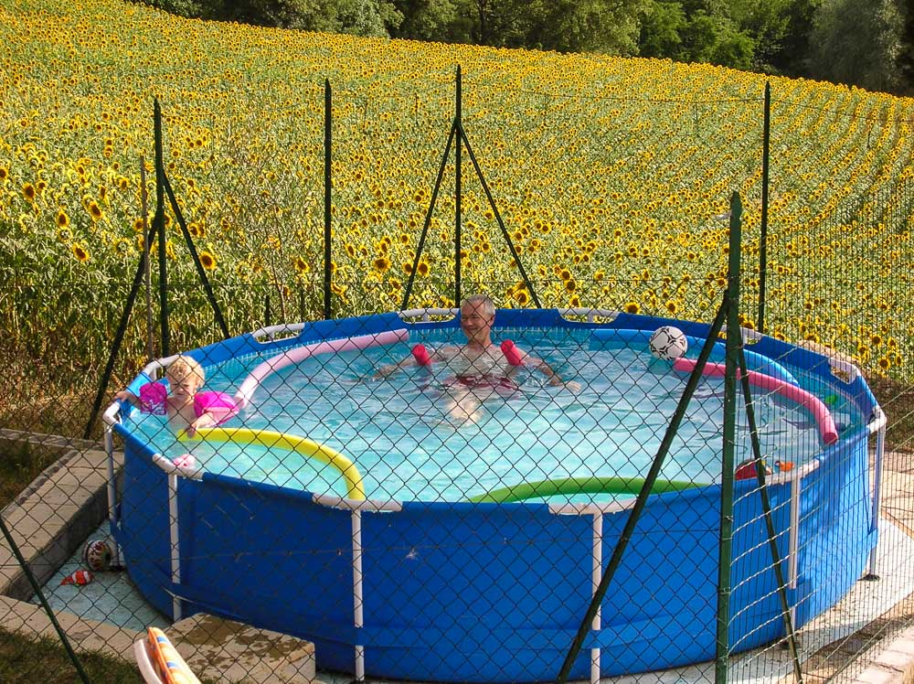 Cool pool fun in July with a backdrop of sunflowers